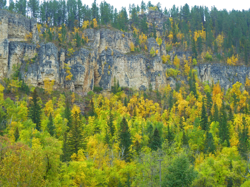 Fall Colors 9/8