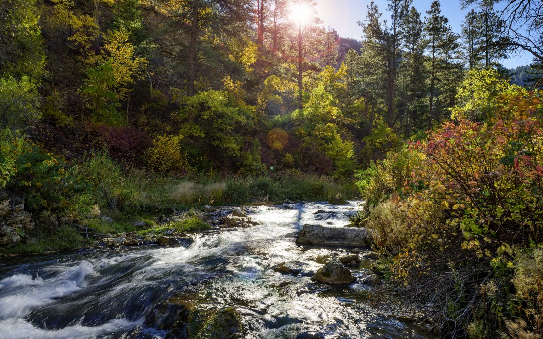 Natural Beauty and Unique Scenery Highlight Spearfish Area