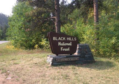 Black Hills National Forest sign